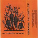 Carottes Sauvages